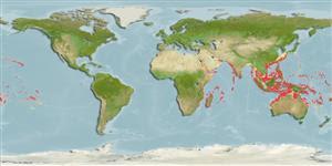 Penyebaran Wilayah Indo-Pasific Tarpon