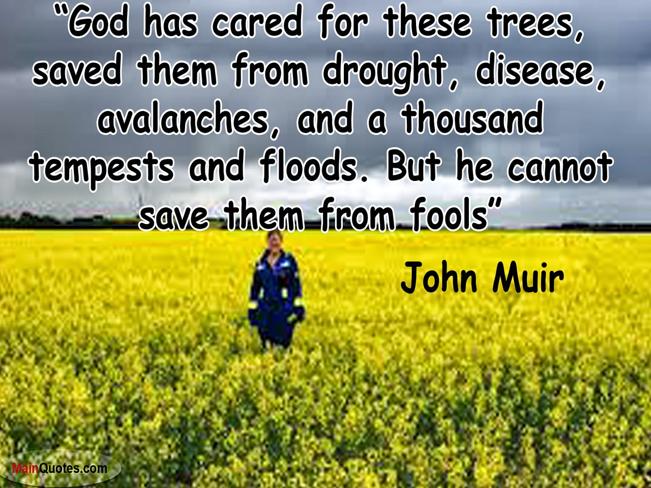 Environmental Quotes To Safe Environment With Images ...