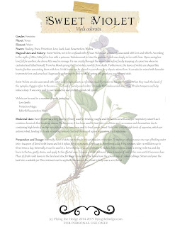 Magical and Medicinal Uses of Sweet Violet. Includes FREE BOS page!