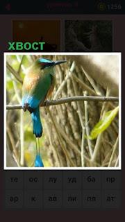 651 слов птица с красивым хвостом сидит на ветке 9 уровень