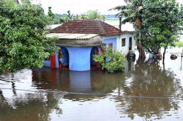 News, Thiruvananthapuram, Kerala, Kuttanad, Water authority, KSEB, KWA Water draining in Kuttanad