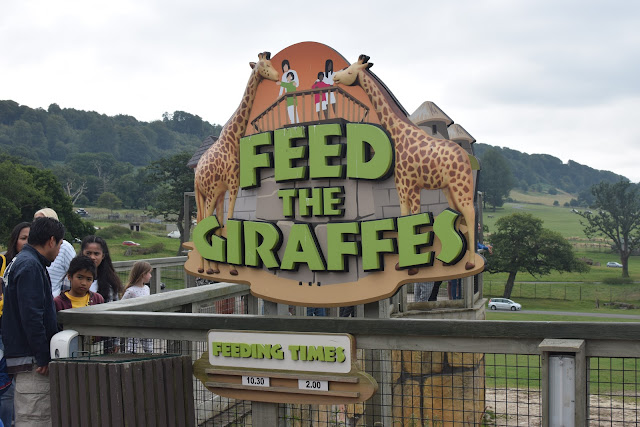 Longleat Safari Park, Days out, family fun, travel, family travel,