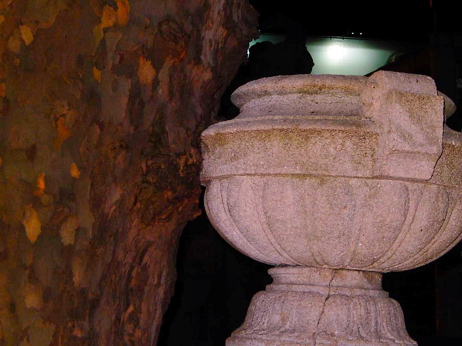http://taximann-juergen.blogspot.de/2015/02/ko-platane-druckt-auf-tritonenbrunnen.html