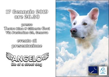 """GENOVA – 17 GENNAIO - PROIEZIONE """"ANGELO – LIFE OF A STREET DOG� PER NON DIMENTICARE"""