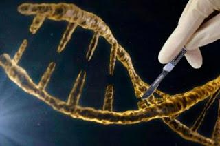 [轉載] 修復缺陷基因
