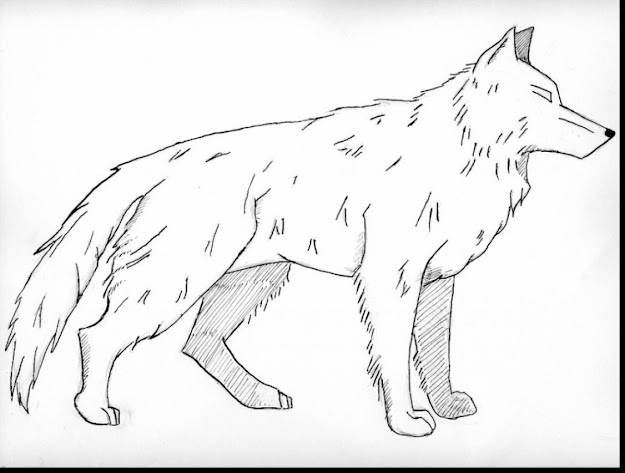 Fantastic Realistic Wolves Coloring Pages With Wolves Coloring Pages And Wolves  Coloring Pages Printable