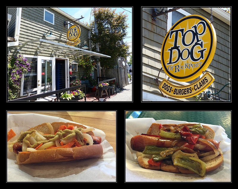 Best Dogs in town at Top Dog