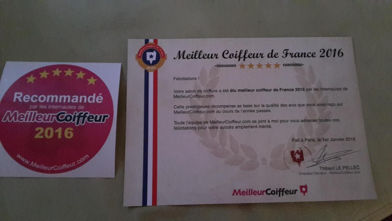 rcompense dcerne par meilleurcoiffeurcom - Coiffeur Coloriste Montpellier
