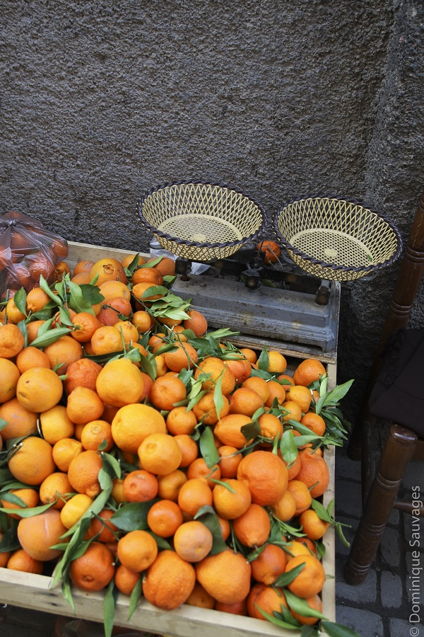 marrakech_mamounia_orange