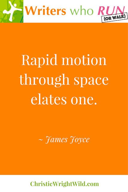 """Rapid motion through space elates one."" ~ James Joyce 