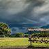 Inilah 5 Tempat Wisata Baluran di Banyuwangi