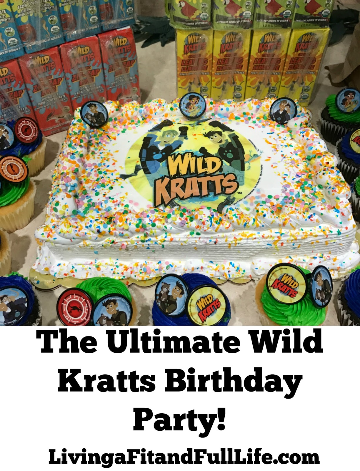 Living A Fit And Full Life The Ultimate Wild Kratts Birthday Party