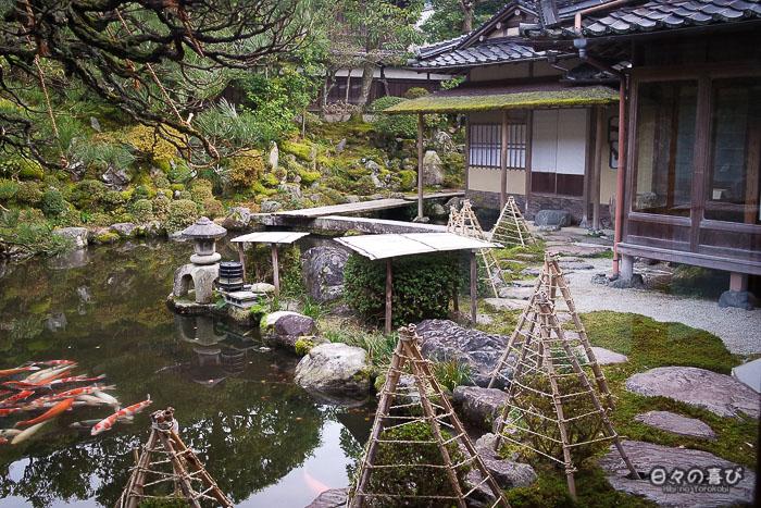Jardin, étang, carpes et yuki-tsuri, maison Ishitani, Chizu, Tottori