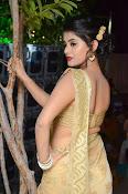 Yamini Bhaskar sizzling in saree-thumbnail-5