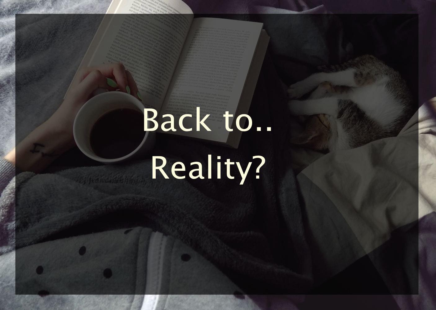 #19 Back to.. reality!