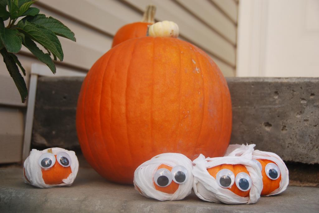 House Of Paint Mini Mummy Pumpkins & Mini Pumpkin Decorating Ideas For Kids - Elitflat