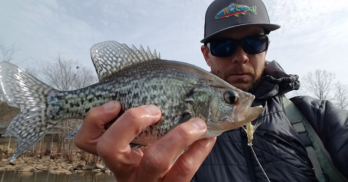Raleigh Flyfishing Guide Service Early Winter Bite Will