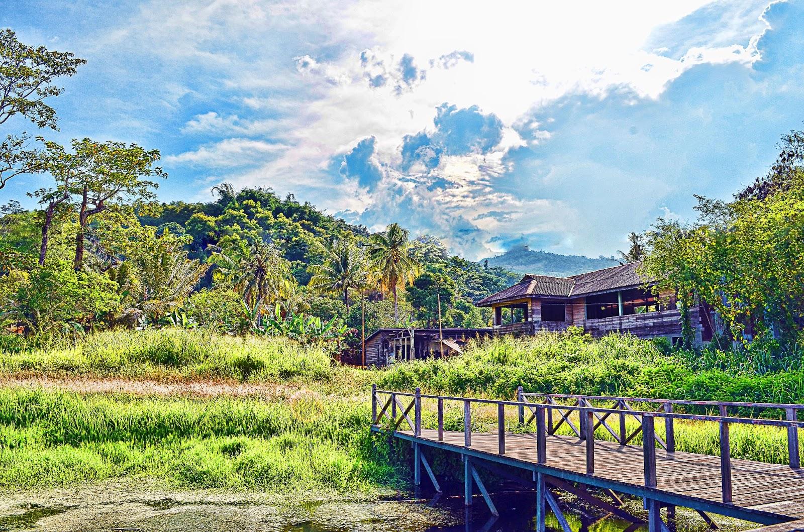 gambar pemandangan kampung - photo #2
