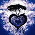 Φέρε περισσότερη αγάπη στη ζωή σου και αυτή θα σου το ανταποδώσει…
