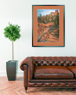 Photograph of Cramer Imaging's fine art photograph 'Desert Oasis' on the wall of a room with a leather couch and potted plant