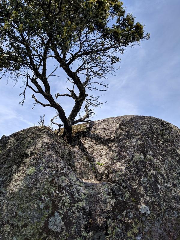 Провинция Бейра-Алта. По Португалии пешком
