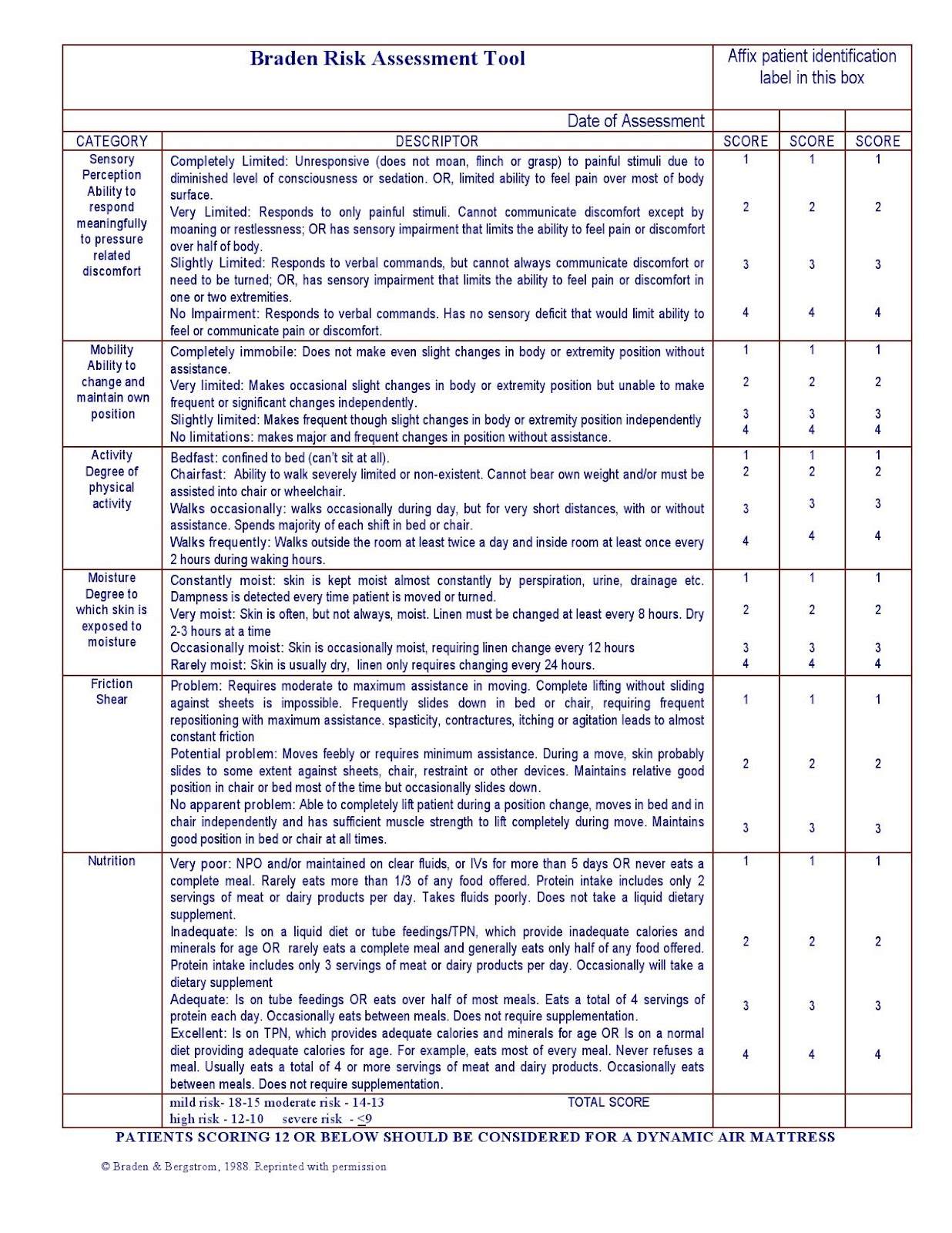 Braden scale assessment form