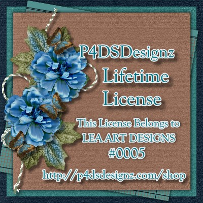LIFETIME LICENSE