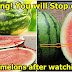WARNING! You Will Stop Eating Watermelons After Watching This!