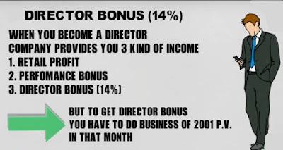 Director Bonus