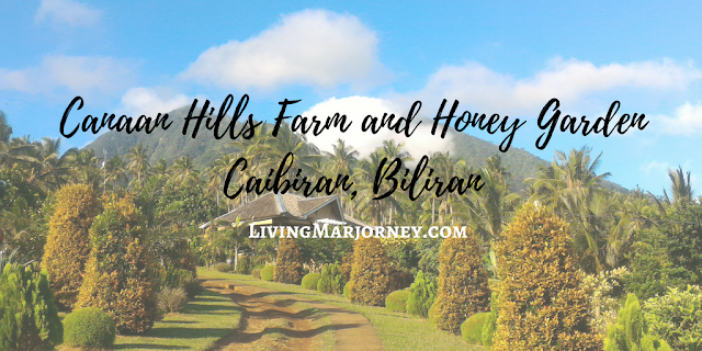 Woman in digital canaan hills farm and honey garden in biliran must visit farm in 2017 for Hills farm and garden