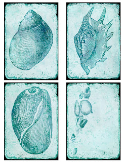 sea shell collage sheet atc background digital download