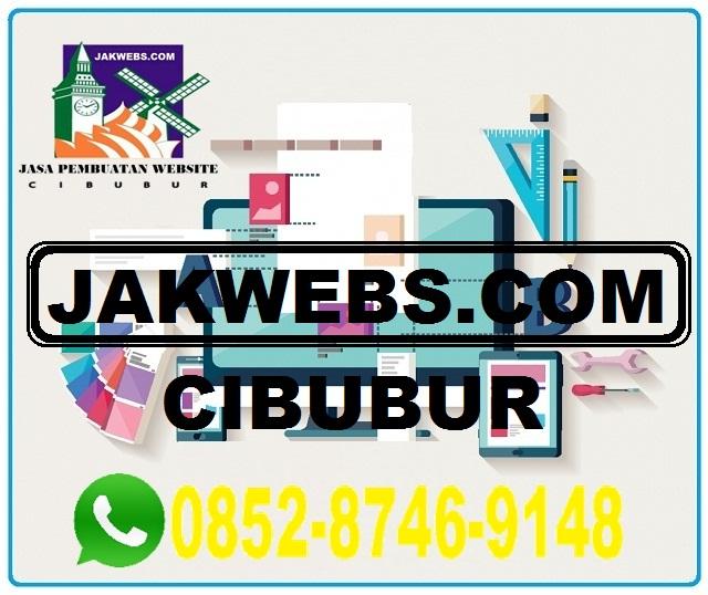 jasa pembuatan website cibubur