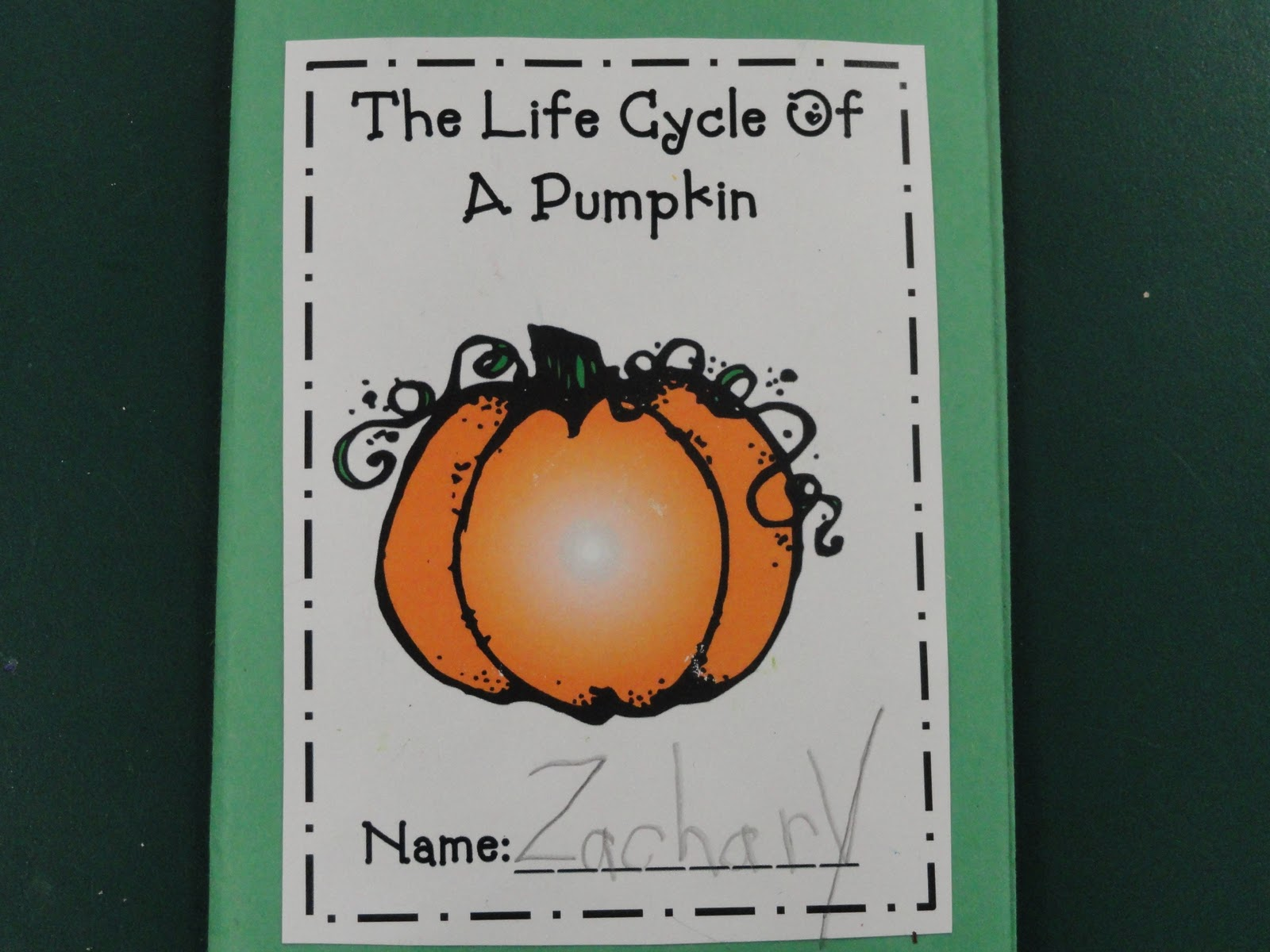 Busy Bees Pumpkin Life Cycle Booklets And 2 D 3d Shapes Booklet