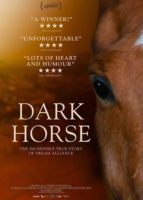 Dark Horse (2015) ταινιες online seires oipeirates greek subs