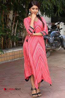 Actress Anu Emmanuel Pictures at Majnu Success Meet  0116