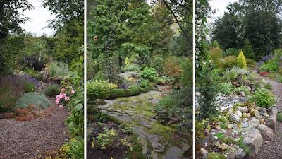 Stengång, mossa, mossbeväxt stengång, japansk trädgårdsinspiration