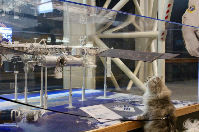 Puri Gagarin studies the International Space Station.