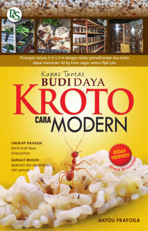 Kupas Tuntas Budi daya Kroto cara Modern