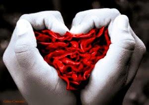 manos haciendo forma de corazón
