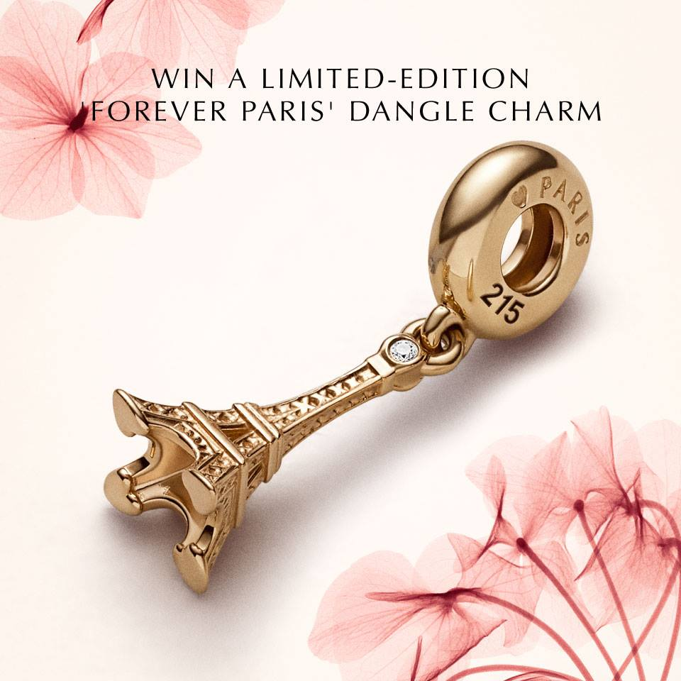 f5b03c0679038 A Few Charms: Forever Paris Contest: using Pandora charms in my recovery