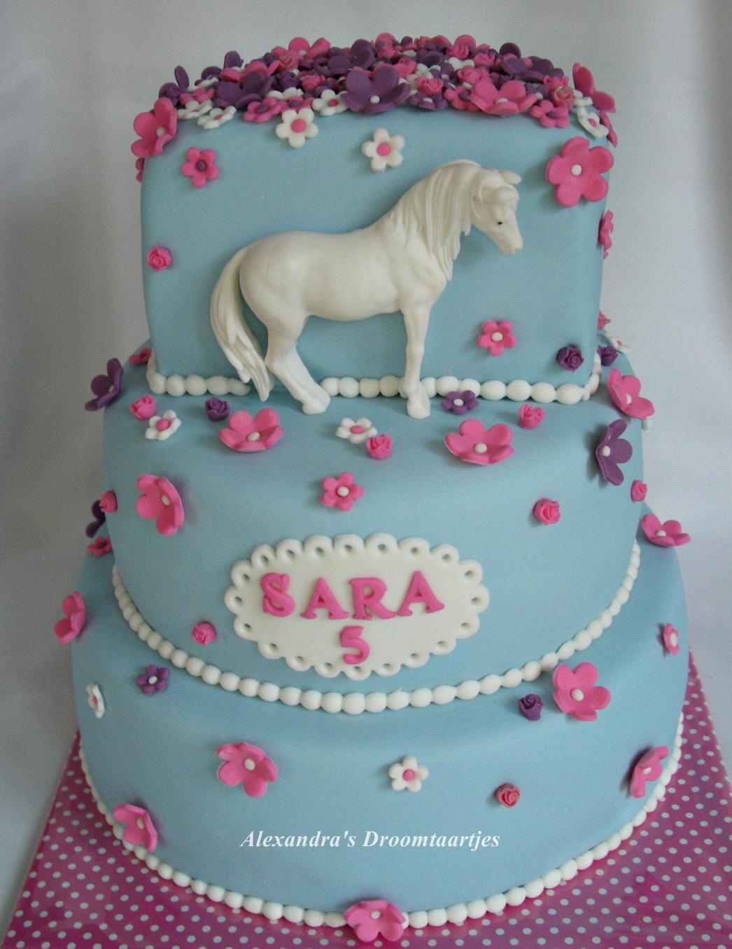 Zeer Paarden taart / horse cake | Alexandra's droomtaartjes &NM82