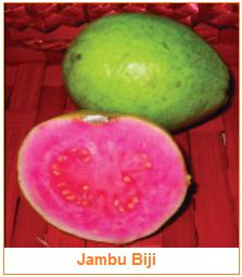 Jambu biji - Berry - Karakteristik Hasil Samping Buah