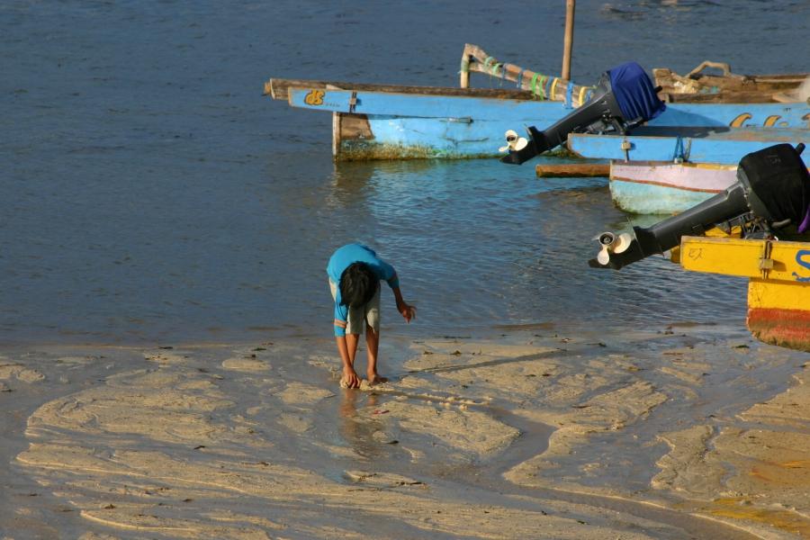 해변의 아이
