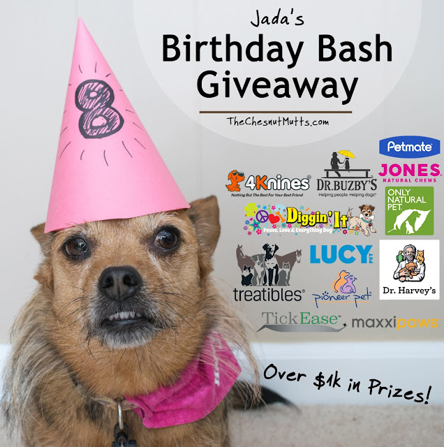 Jada's Birthday Bash Giveaway - Over $1000 in Prizes!