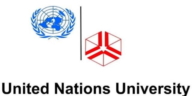 The United Nations University Junior Fellows Internship Program 2020