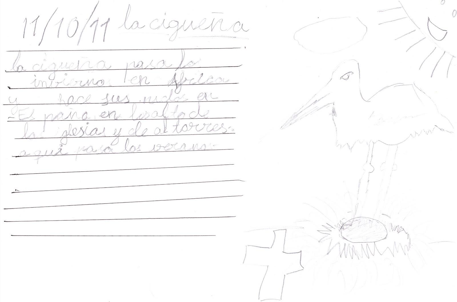 Ceip El Zargal Second Grade Las Ciguenas Inmaculada