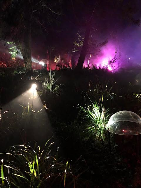 Enchanted Parks: Saltwell Park, Gateshead: light show