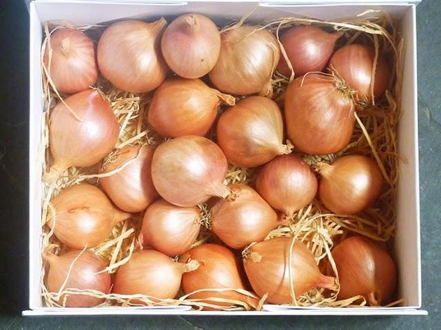 box of lovely fresh shallots