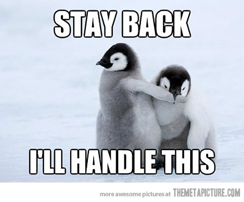 protective penguin