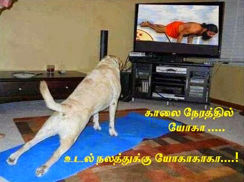facebook fb tamil comments images